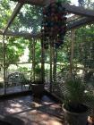 Morley Manor Aviary