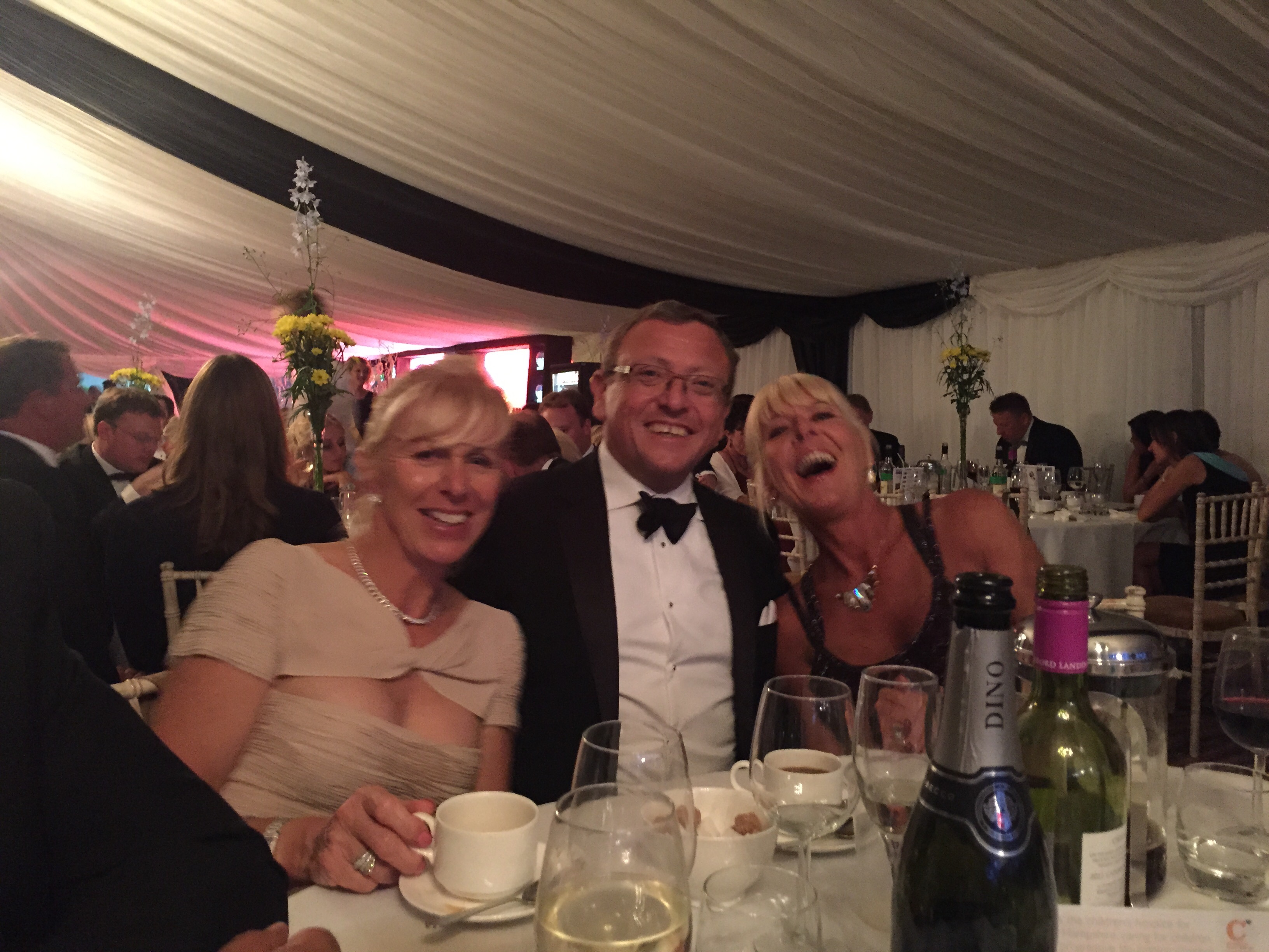 Hickstead Ball 2015